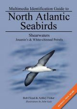 Multimedia Identification Guide to North Atlantic Seabirds: Shearwaters: Jouanin's & White-Chinned Petrels