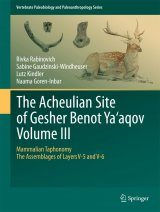 The Acheulian Site of Gesher Benot Ya'aqov, Volume III