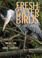 Freshwater Birds of Ireland