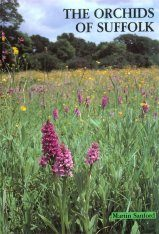 The Orchids of Suffolk
