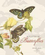 A Flutter of Butterflies
