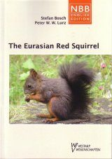 The Eurasian Red Squirrel Image