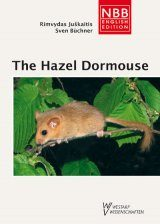 The Hazel Dormouse Image