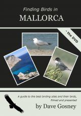 Finding Birds in Mallorca - The DVD (Region 2)