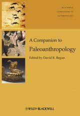 A Companion to Paleoanthropology Image