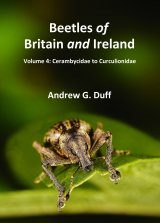 Beetles of Britain and Ireland, Volume 4