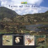 Tarns of the Fells