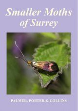 Smaller Moths of Surrey