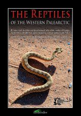 The Reptiles of the Western Palearctic, Volume 2 Image