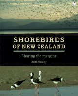 Shorebirds of New Zealand