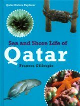 Sea and Shore Life of Qatar Image