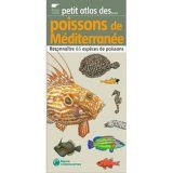 Petit Atlas des Poissons de Méditerranée: Reconnaître 65 Espèces de Poissons [Small Atlas of Mediterranean Fishes: Recognizing 65 Species of Fish]