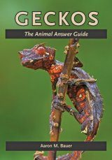Geckos: The Animal Answer Guide Image