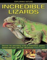 Incredible Lizards