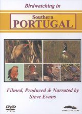Birdwatching in Southern Portugal (All Regions)