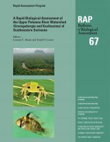 A Rapid Biological Assessment of the Upper Palumeu River Watershed (Grensgebergte and Kasikasima), Southeastern Suriname Image