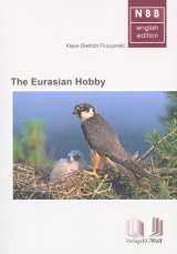 The Eurasian Hobby (Falco subbuteo)
