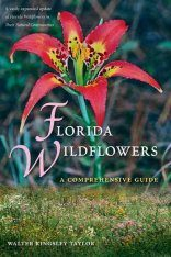 Florida Wildflowers