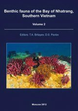Benthic Fauna of the Bay of Nhatrang, Southern Vietnam, Volume 2 Image