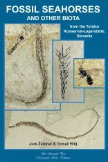 Fossil Seahorses and Other Biota from the Tunjice Konservat-Lagerstätte, Slovenia Image