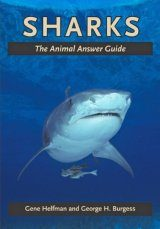 Sharks: The Animal Answer Guide Image