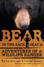Bear in the Back Seat Image