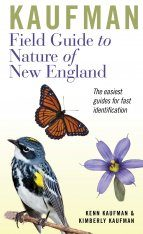 Kaufman Field Guide to Nature of New England Image
