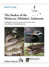 The Snakes of the Moluccas (Maluku), Indonesia