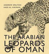 The Arabian Leopards of Oman