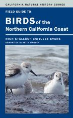 Field Guide to Birds of the Northern California Coast Image