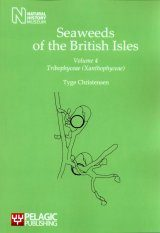Seaweeds of the British Isles, Volume 4 Image