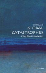 Global Catastrophes: A Very Short Introduction