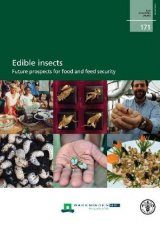Edible Insects Image