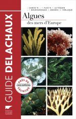 Algues des Mers d'Europe: Près de 300 Espèces Décrites [Marine Algae of Europe: Close to 300 Species Described]