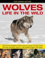 Wolves - Life in the Wild Image