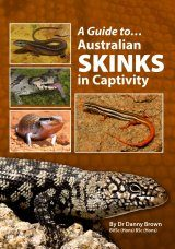 A Guide To Australian Skinks In Captivity