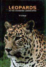 Leopards in the Changing Landscapes