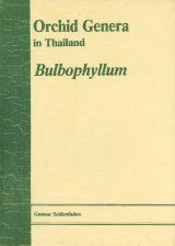 Orchid Genera in Thailand, Volume 8 Image
