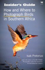 How and Where to Photograph Birds in Southern Africa Image
