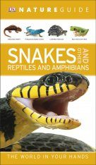 DK Nature Guide Snakes and Other Reptiles and Amphibians