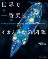 Cephalopods, Amazing and Beautiful Creatures [Japanese]
