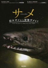 Shark: From the Giant to Deep Sea Small Sharks [Japanese]