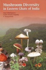 Mushroom Diversity in Eastern Ghats of India