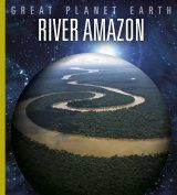 River Amazon Image
