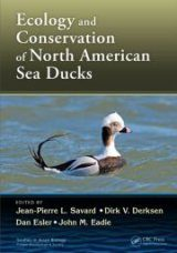 Ecology and Conservation of North American Sea Ducks Image