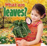 What are Leaves? Image