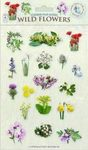 Sticker Play Scenes: Wild Flowers