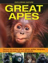 Great Apes Image