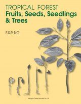 Tropical Forest Fruits, Seeds, Seedlings & Trees