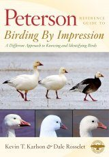 Peterson Reference Guide to Birding by Impression Image